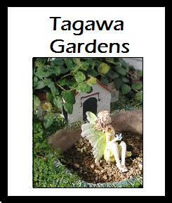 Tagawa